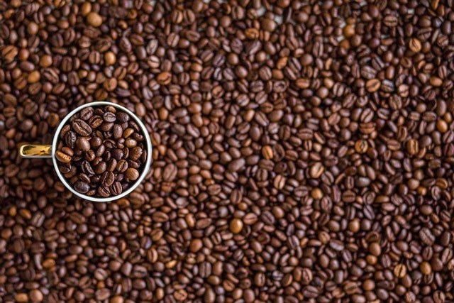 cafe envasadora al vacío