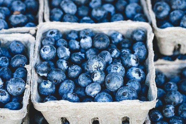 como deshidratar fruta