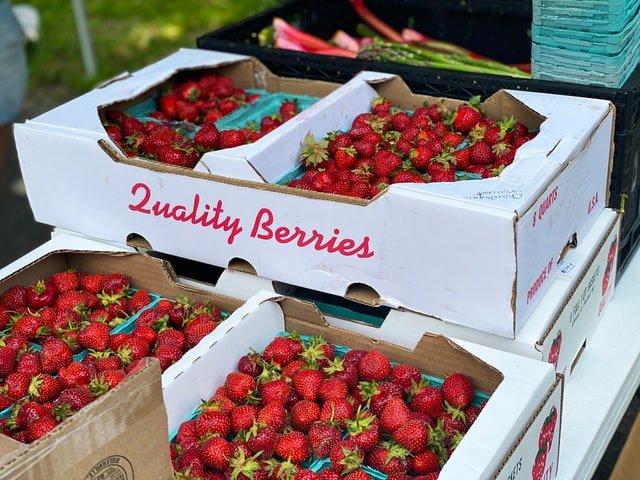 como deshidratar frutas - frutas importación