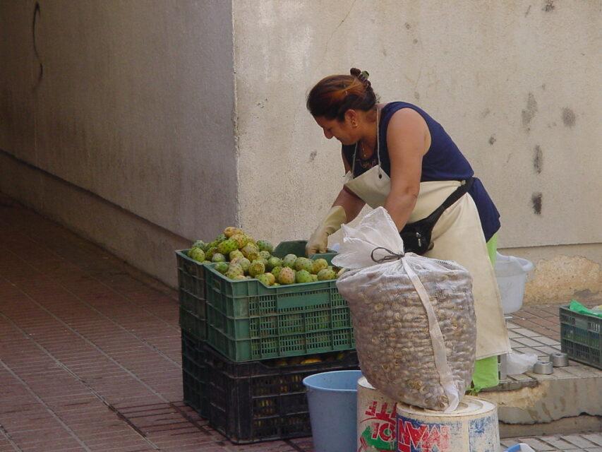 mercado higo pala