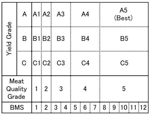 clasificacion wagyu
