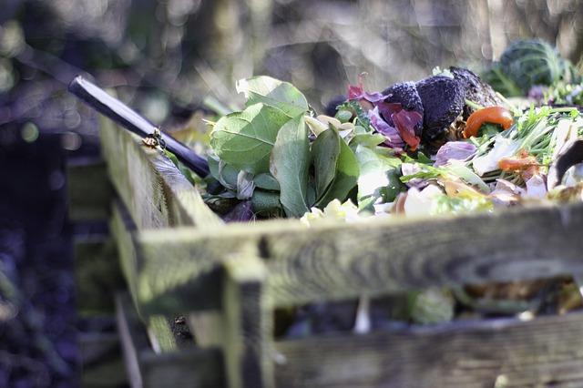 compostar - cocina zero waste